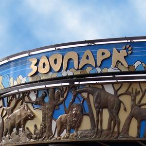 Зоопарки Черняховска